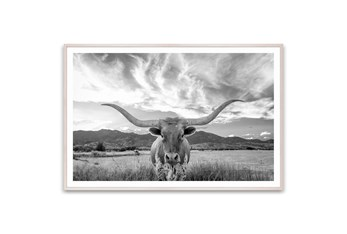Picture-Texas Longhorn Steer 60X40