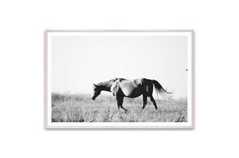 Picture-Quarter Horse 60X40