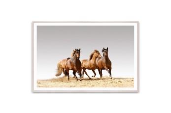 Picture-Horse Run 60X40