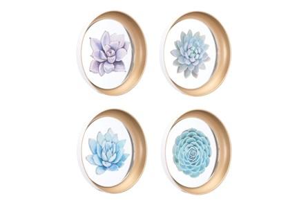 Succulent Art On Plates Set Of 4 - Main