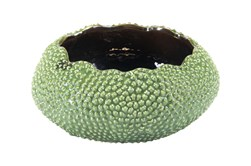 4 Inch Textures Round Green Bowl