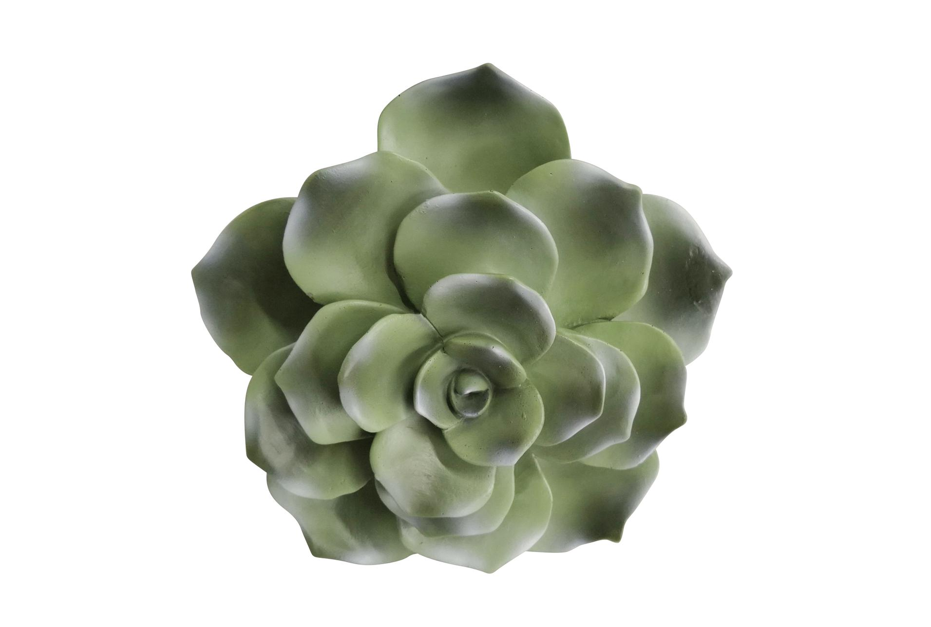 8 Inch Green Succulent Wall Decor Living Spaces