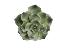 8 Inch Green Succulent Wall Decor