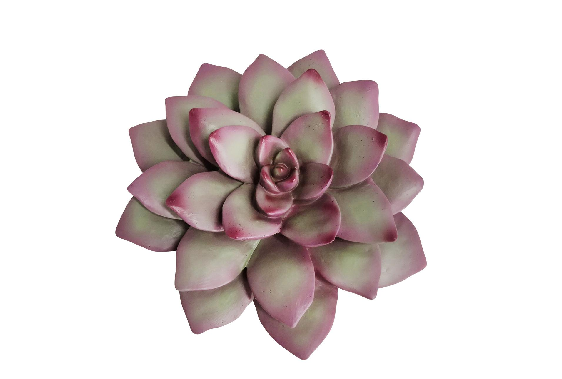 8 Inch Pink And Green Succulent Wall Decor Living Spaces