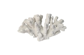 7 Inch White Coral Decor