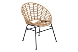 Shell Outdoor Natural Dining Chair Set Of 2