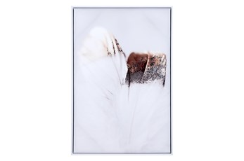 Picture-Multicolor Feather Framed Canvas