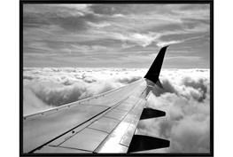 52X42 Wing