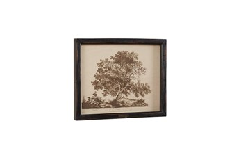 Magnolia Home Tree Print In Wood Frame, Black By Joanna Gaines