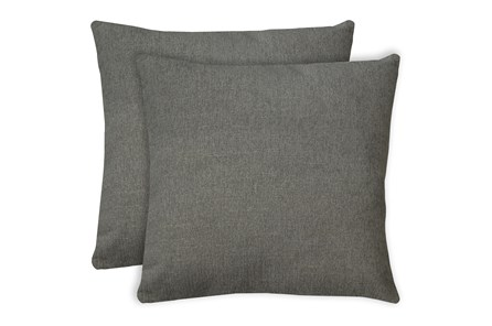 24X24 Set Of 2 Curious Silverpine Gray Throw Pillow - Main