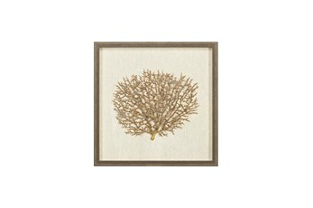 Picture-Gold Sea Fan Shadowbox 18X18