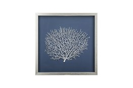 Picture-Silver Sea Fan Shadowbox With Blue Mat 18X18