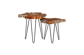 Brown Teak Wood Slice Accent Table- Set Of 2