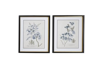 20X24 Inch Blue + Cream Vintage Floral Wall Art Set Of 2
