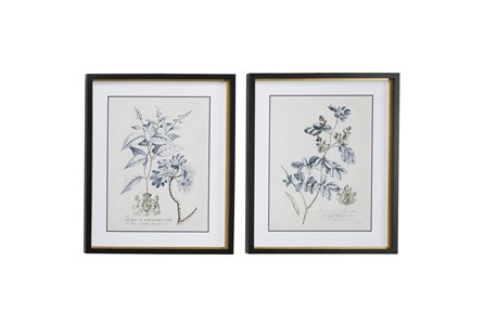20X24 Inch Blue + Cream Vintage Floral Wall Art Set Of 2 - Main