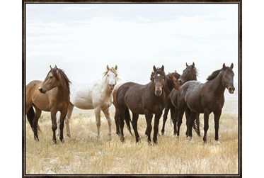 52X42 Wild Horses With Espresso Frame
