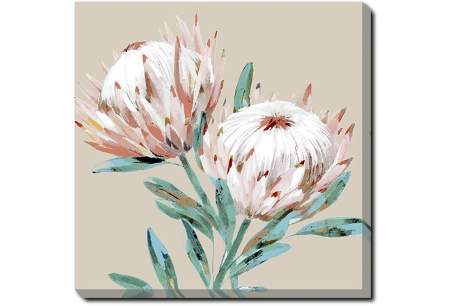 Picture-Big Blooms Gallery Wrap Canvas 36X36 - 360