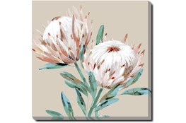 Picture-Big Blooms Gallery Wrap Canvas 45X45