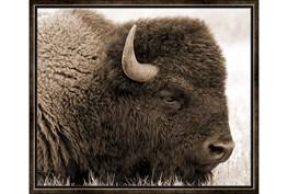 26X22 Buffalo Espresso Frame