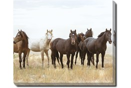 24X20 Wild Horses With Super Gallery Wrap Canvas
