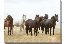 40X30 Wild Horses With Super Gallery Wrap Canvas