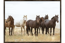 42X32 Wild Horses With Espresso Frame
