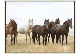 42X32 Wild Horses With Birch Frame