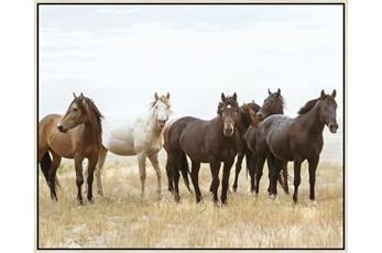 52X42 Wild Horses With Birch Frame