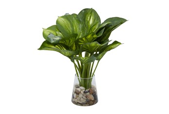 """14"""" Artificial Hosta Leaves In Glass Vase With Rocks"""