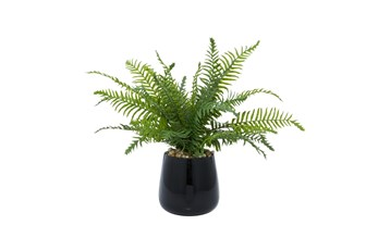 "17"" Artificial Fern In Black Vase"