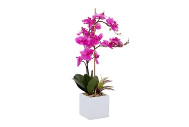"""28"""" Artificial Pink Orchids In White Pot"""