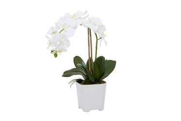 "18"" Artificial White Orchids In Square Pot"