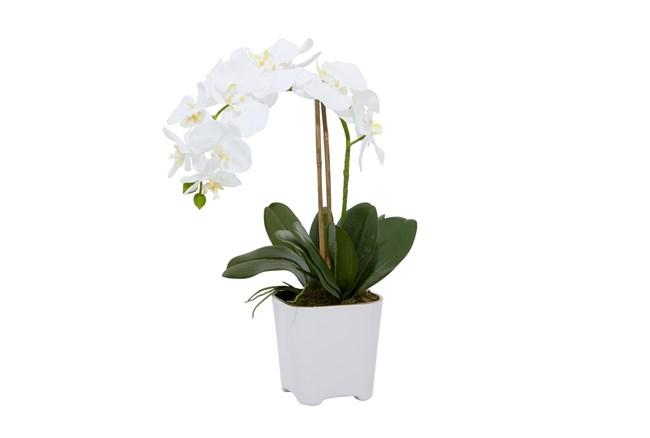 "18"" Artificial White Orchids In Square Pot - 360"