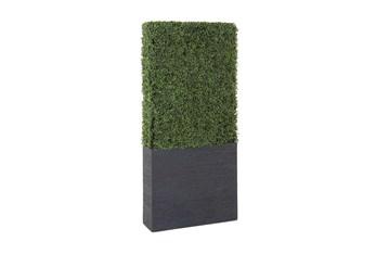 "59"" Boxwood Hedge"