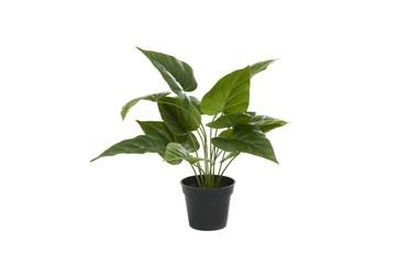 "17"" Green Polyethylene Artificial Foliage"