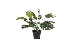 "16"" Tropical Green Artificial Plant"