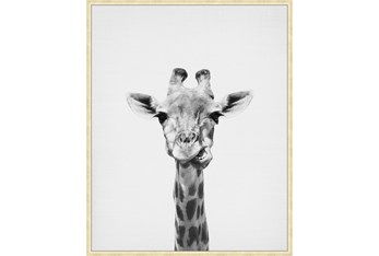 42X52 Giraffe With Gold Champagne Frame