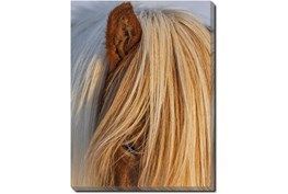 30X40 Horse Hair Don't Care With Gallery Wrap Canvas