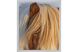22X26 Horse Hair Don't Care With Silver Frame