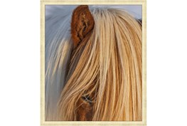 22X26 Horse Hair Don'T Care With Gold Champagne Frame