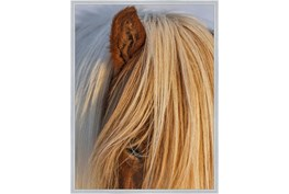 32X42 Horse Hair Don't Care With Silver Frame
