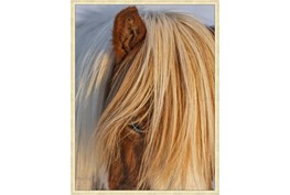 32X42 Horse Hair Don'T Care With Gold Champagne Frame
