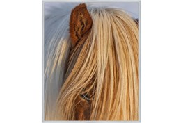 42X52 Horse Hair Don't Care With Silver Frame