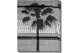 20X24 B&W Palm Tree With Gallery Wrap Canvas