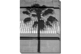 30X40 B&W Palm Tree With Gallery Wrap Canvas