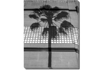 40X50 B&W Palm Tree With Gallery Wrap Canvas