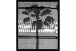 22X26 B&W Palm Tree With Black Frame