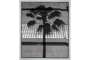 22X26 B&W Palm Tree With Silver Frame