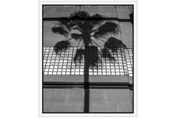 22X26 B&W Palm Tree With White Frame