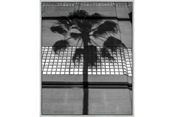 42X52 B&W Palm Tree With Silver Frame